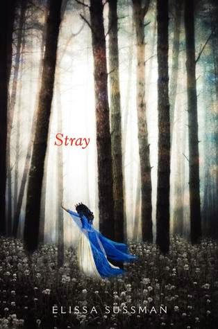 Review: Stray   Straight and Narrow is the Way